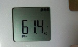 ダイエット前の筋肉量