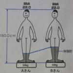 BMIとは【計算方法、男女の標準値、体脂肪率との違い】
