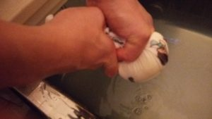手作り豆乳ローションを風呂に入れる3