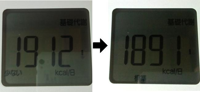 断食前と後の基礎代謝量を比較