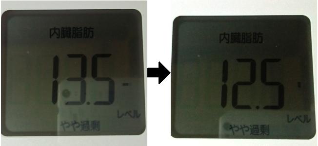 断食前と後の内臓脂肪量を比較