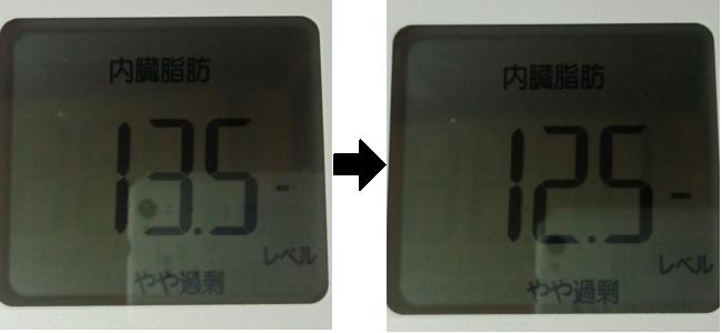 3日間断食した前後の内臓脂肪を比較
