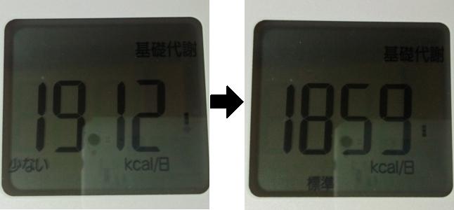 2日断食前後での基礎代謝量の比較